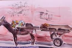 L'âne revint du souk de Guelmim
