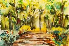 Dans le bois de Keryhuer, aquarelle sur papier Canson Montval 30x40