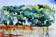 Sur les rives de l'aulne, près de Trégarvan