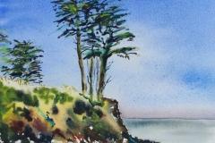 Kerfany les pins