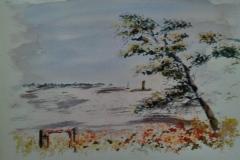 L'arbre de Fort du Talus, à Ploemeur