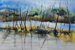 L'étang de Ter à Ploemeur