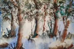Le bois de Kergantic, a Ploemeur