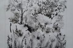 Avec les croqueurs quimperlois. Dans le parc de Bois joli, accompagnés d'une fraîcheur matinale.