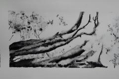 L'arbre qui fume, au parc de Bois Joli