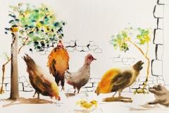 les poules de Poul Fang